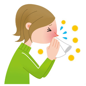 Аллергия на Тимофеевку