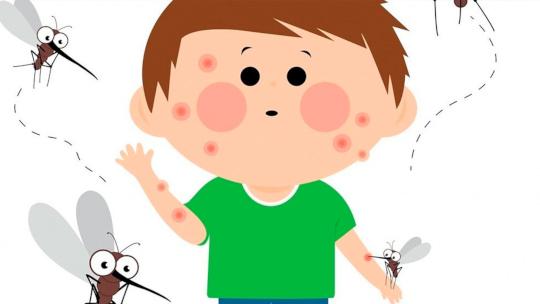 диагностика аллергии на комара