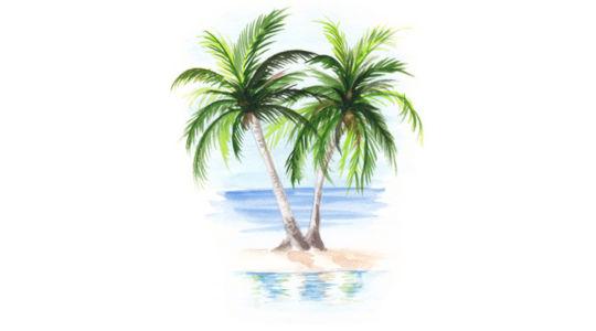 Аллергия на финики и пыльцу финиковой пальмы