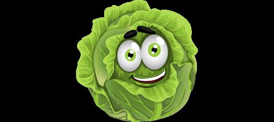 Аллергия на капусту белокочанную